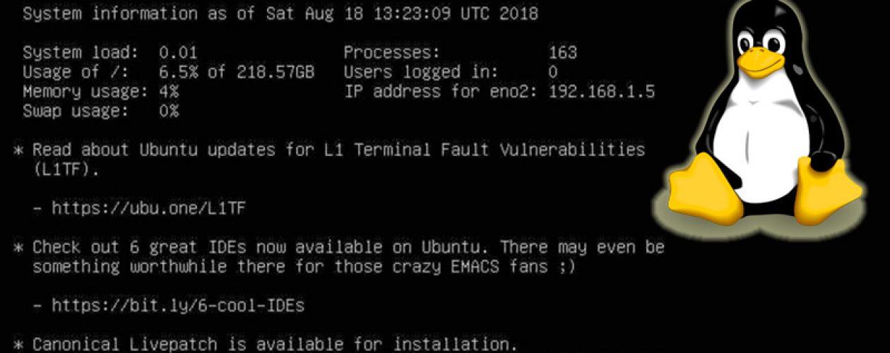 Instalando Interfaz Gráfica en Ubuntu Server 18.04.1